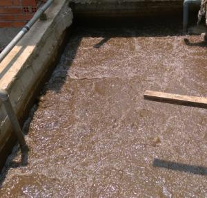 bể chứa bùn hoạt tính là bước rất quan trọng trong xử lý nước thải