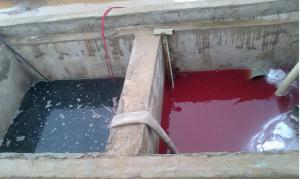 Đặc điểm của nước thải thủy sản