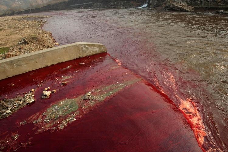 ô nhiễm nặng nề